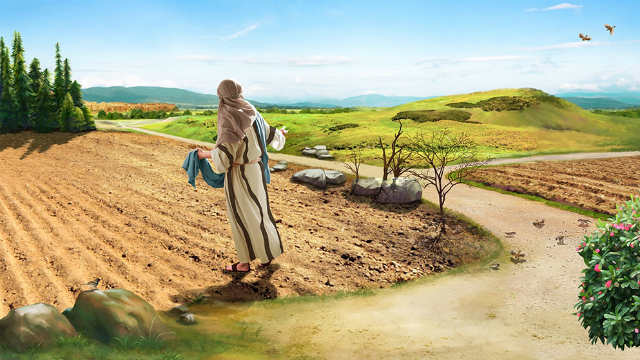 L'opera del Signore Gesù